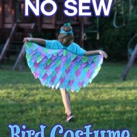 DIY No Sew Bird Costume