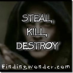 Steal Kill Destroy