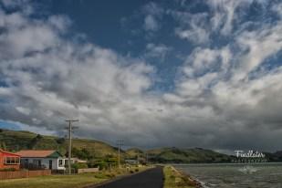 Driving round the Otago Peninsula