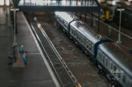 2014 TrainShow (15)