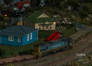 2014 TrainShow (19)