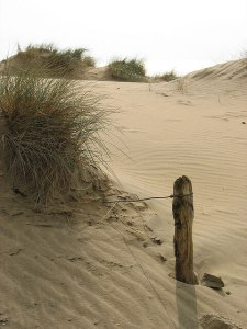 Sandy Beach at Camber Sands - Camber Sands Holiday Park