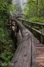 cascade state park-8864