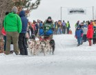 Apostle Islands Dog Sled Races 2015-7509-3