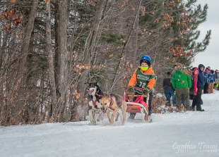 Apostle Islands Dog Sled Races 2015-7557-1
