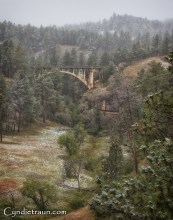 Black Hills SD-6028