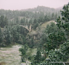Custer State Park-6031