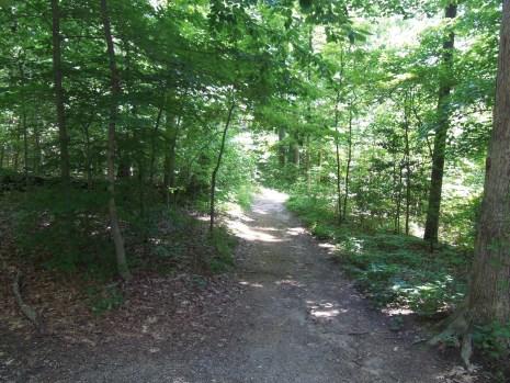 Down-The-Trail-Photo-4