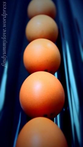 eggcentric3.1