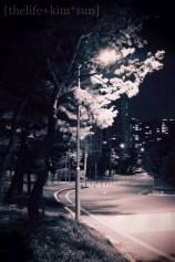 nightlight2.2