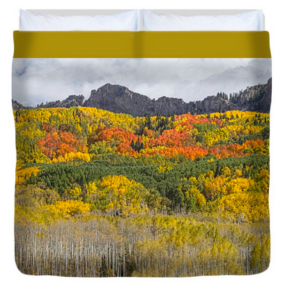 Colorado Kebler Pass Fall Foliage King Duvet Cover