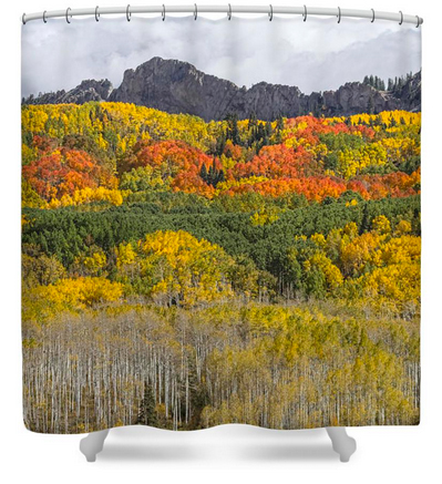 Colorado Kebler Pass Fall Foliage Shower Curtain