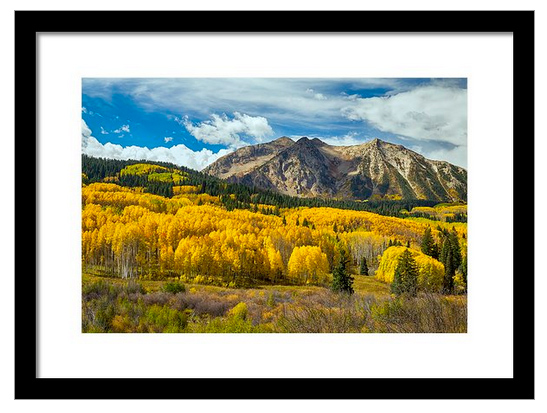 Colorado Rocky Mountain Fall Foliage Framed Print