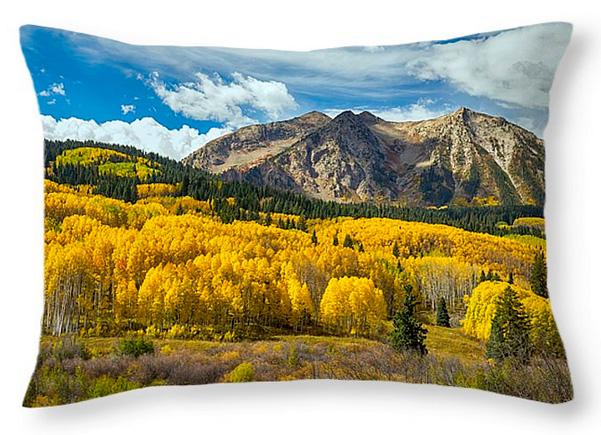 Colorado Rocky Mountain Fall Foliage Throw Pillow 20x14
