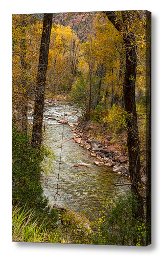 Trout Fishing Stream Crossing Swing Canvas Print