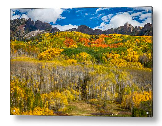 Colorful Colorado Kebler Pass Fall Foliage Acrylic Print
