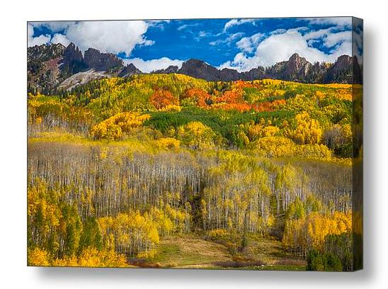 Colorful Colorado Kebler Pass Fall Foliage Canvas Print