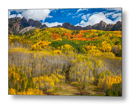 Colorful Colorado Kebler Pass Fall Foliage Metal Print