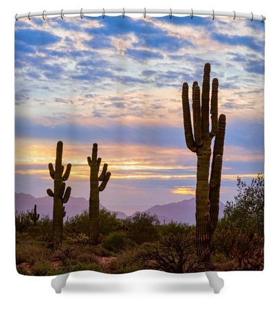 Just Another Colorful Sonoran Desert Sunrise Shower Curtain