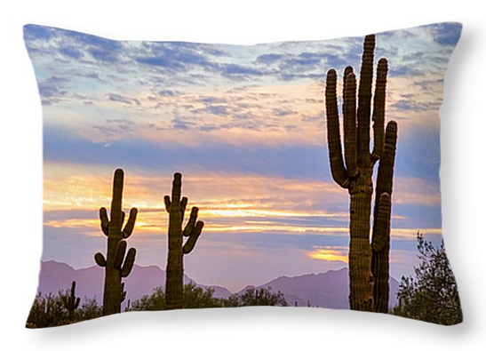 Just Another Colorful Sonoran Desert Sunrise Throw Pillow 20x20