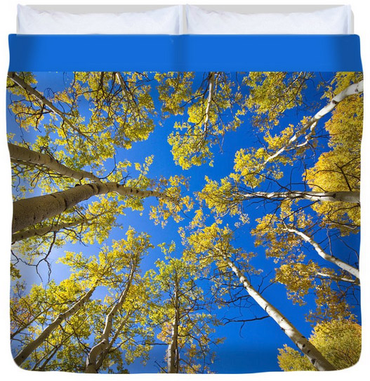 """Golden View Looking Up King (104"""" x 88"""") Duvet Cove"""