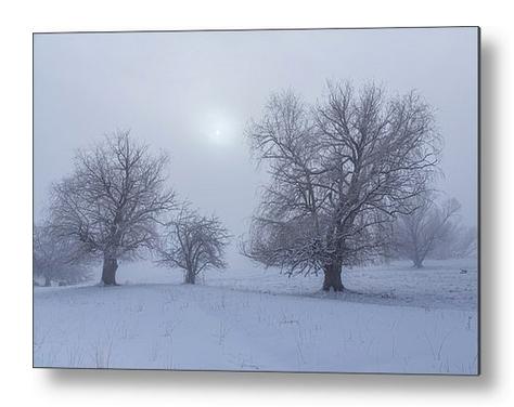 Snowy Foggy Sun Burning Metal Print