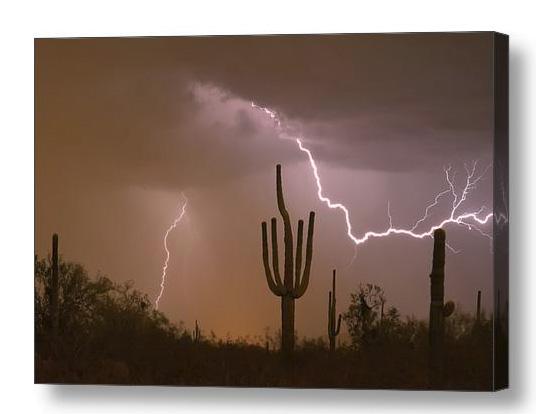Sonoran Saguaro Southwest Desert Lightning Strike Canvas Print