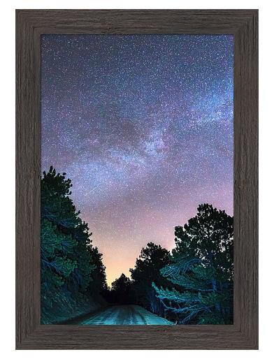 Forest Night Light Custom Framed Prints