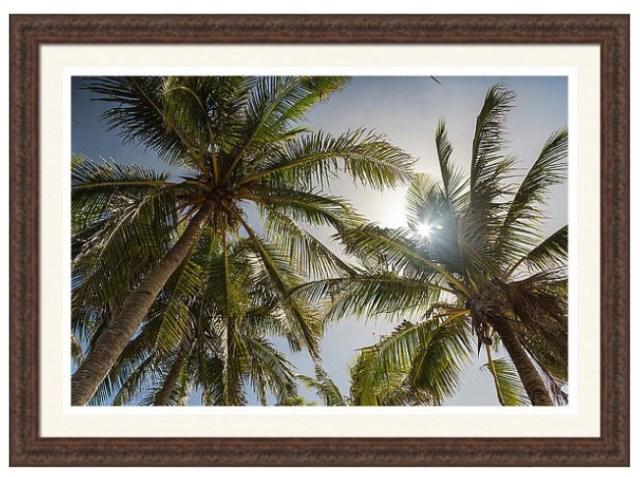 Tropical Sun Custom Framed Prints