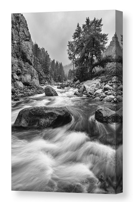 Colorado Black_White_Canyon_Portrait_Canvas_Print