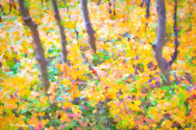 Colorful Forest Abstract painting