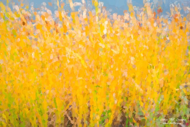 Abstract Colorful Cattails Grasses art painting