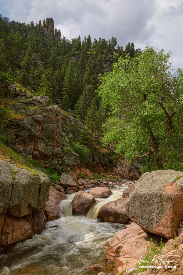Getting Lost In A Canyon Creek Art Prints