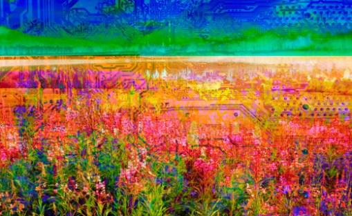 Impressionism Landscape Flowers