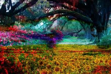 Willow Garden Flowers, Impressionism