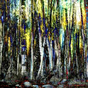 Impressionist Impressionism Painters