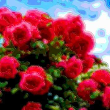 Flower Art Sale Red Roses