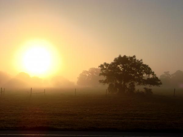 https://i2.wp.com/fineartamerica.com/images-medium/country-morning-sunrise-kimberly-camacho.jpg