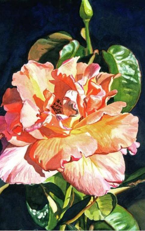david-lloyd-glover-artist