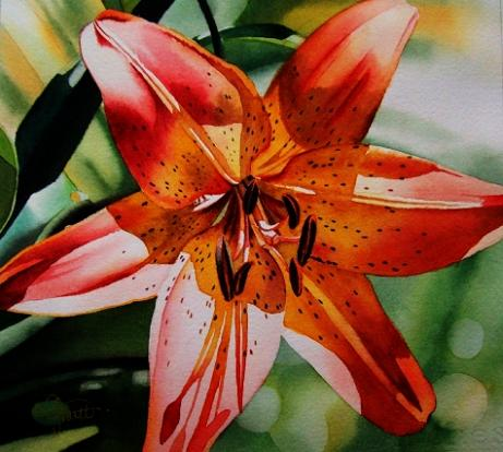 Floral Watercolor Paintings By Jacqueline Gnott