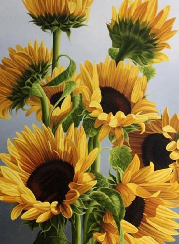 sunflower-artist