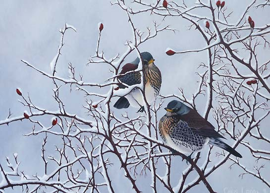 oil paintings of birds