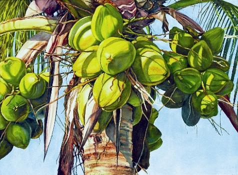 coconut-paintings