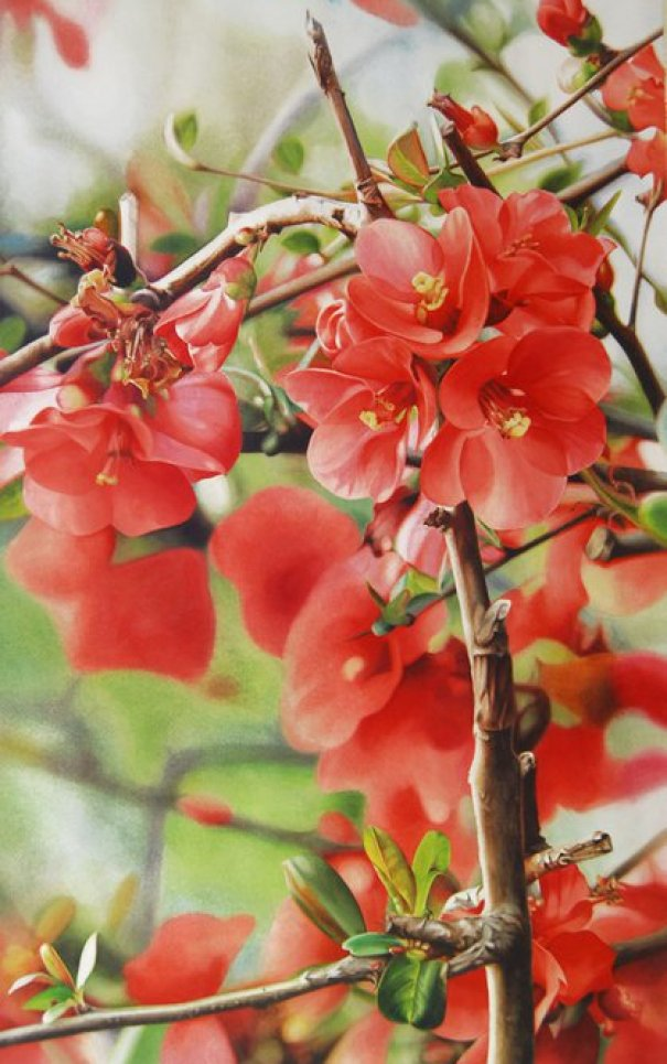 red-flower-paintings