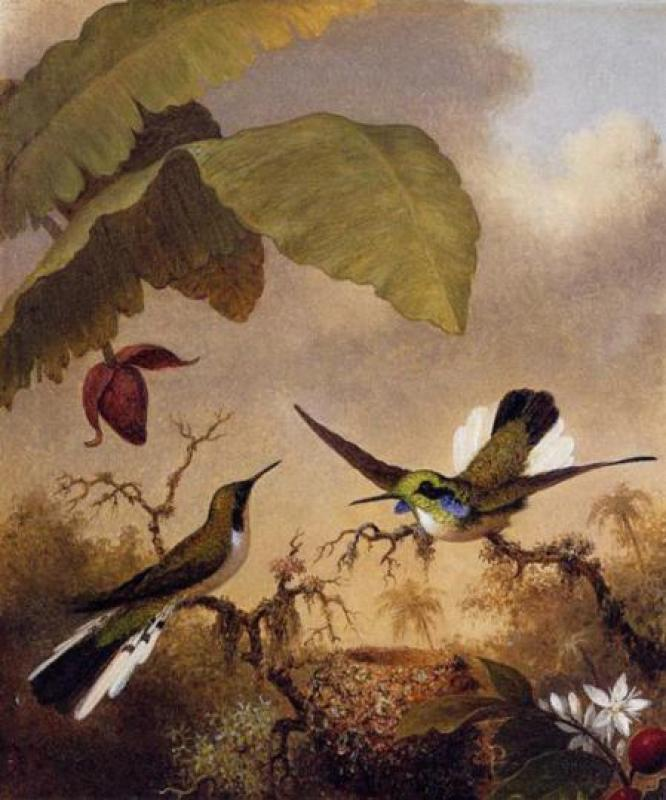 Martin-johnson-heade-sale