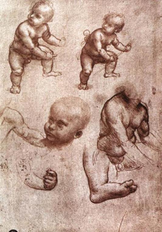 leonardo-da-vinci-human-anatomy