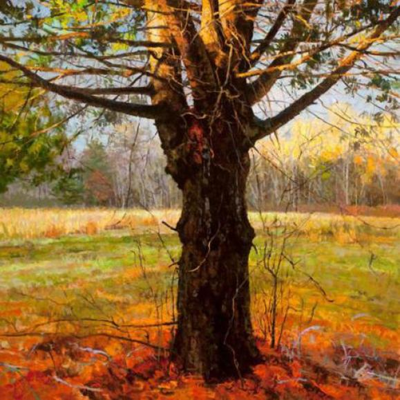 tree-paintings-oil
