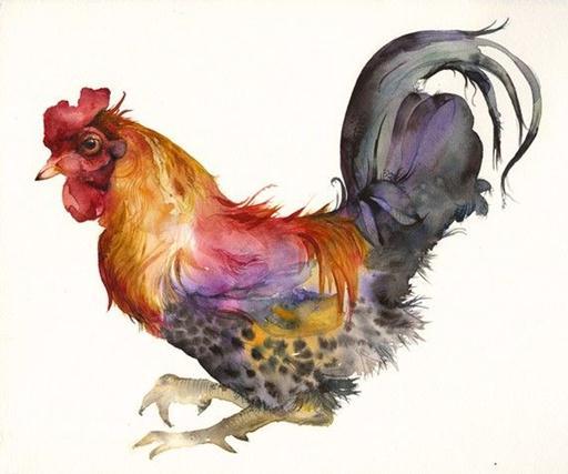 Rooster-watercolor-paintings