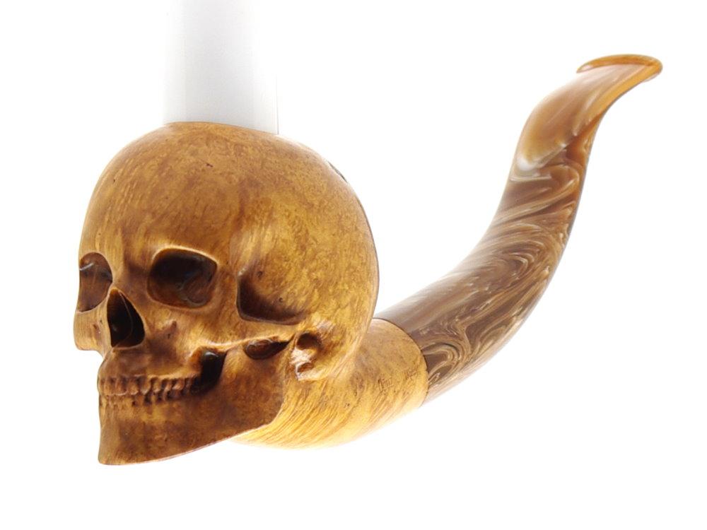 M-018d Human Skull
