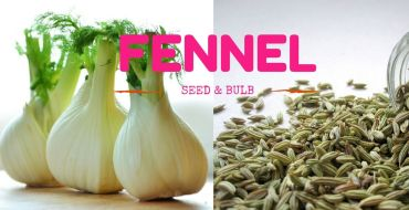 Fennel Seed and Bulb In Fine dining Indian Magazine